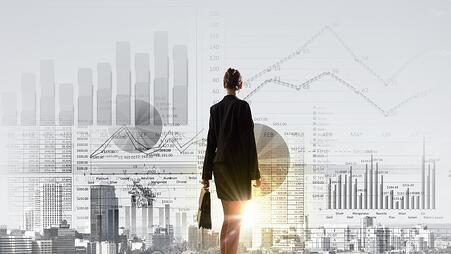 Rear view of businesswoman looking at business marketing strategy