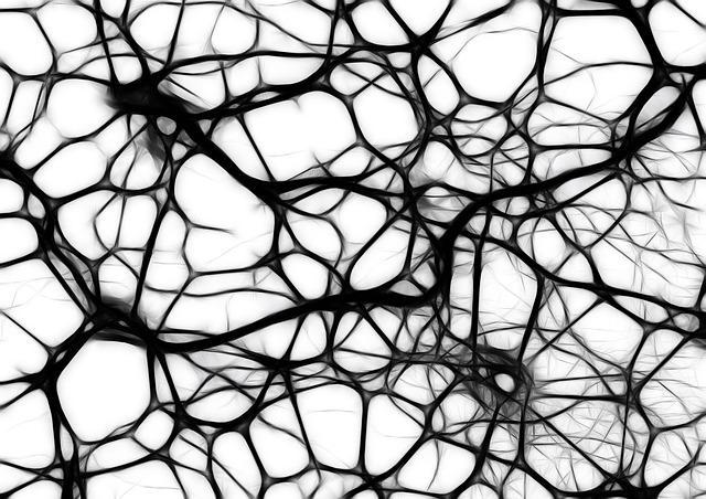 neurons-440660_640